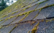 roof-before-cleaning